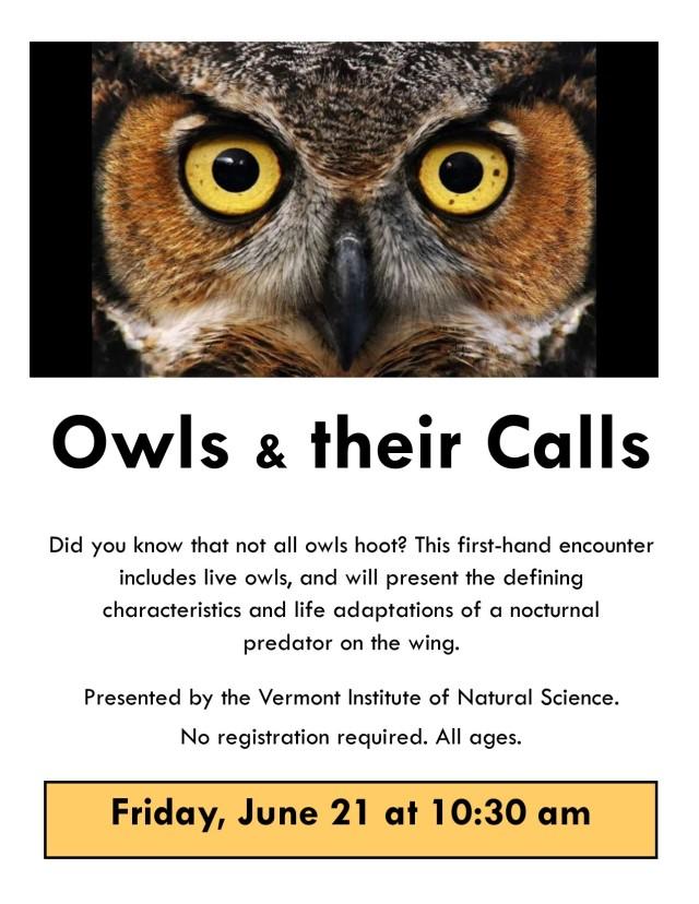 2019 VINS Owls Poster